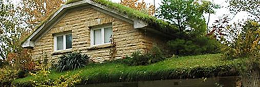 Les toits végétaux: ça pousse!