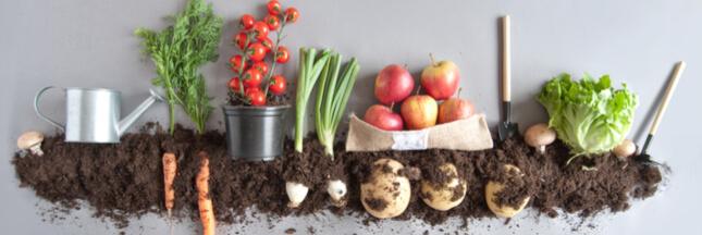 Alimentation bio: 6 bonnes raisons de tous s'y mettre
