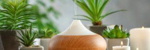 Aromathérapie - Les meilleures huiles essentielles à respirer