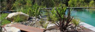 Une piscine naturelle pour une baignade écologique