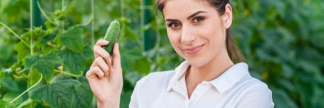 être végétarien devenir végétarisme légumes