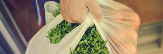 Bioplastique, le plastique végétal pas si fantastique