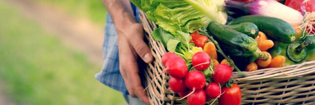 Manger de saison: chaque mois, les fruits et légumes et produits de saison