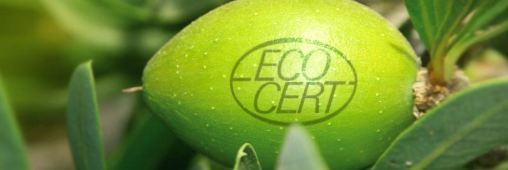 Ecocert, une garantie pour les produits bio