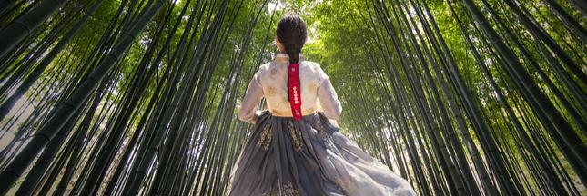 Les vêtements en bambou sont-ils vraiment écologiques?