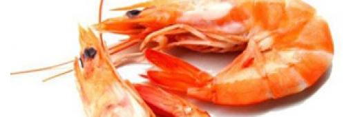 Les crevettes, «poissons» que l'on peut acheter