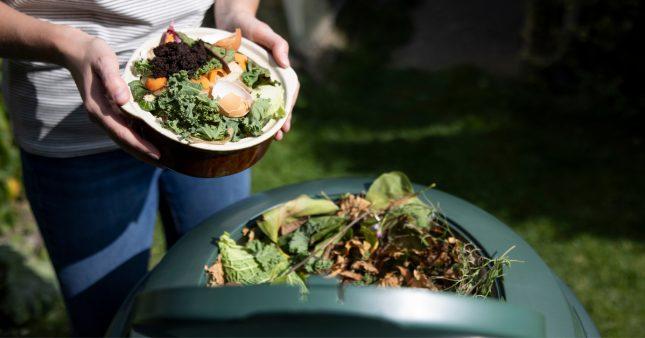 activateur de compost