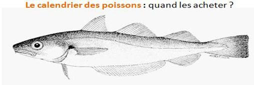 Le calendrier des poissons