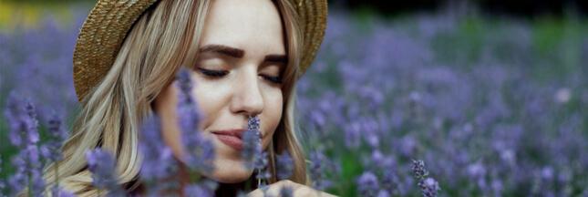 Aromachologie: le pouvoir des odeurs
