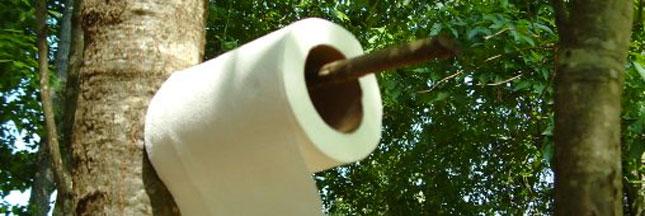 Toilettes sèches: chassez les préjugés!