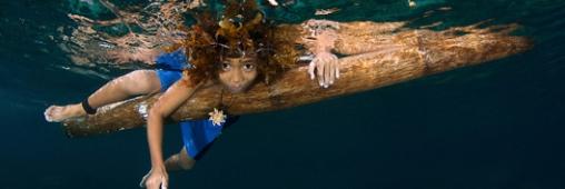 Ocean Art: les plus belles photos du concours 2011