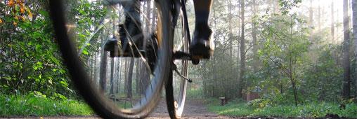 Tourisme vert: ça roule pour le cyclotourisme!