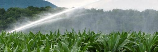 Sécheresse: où sont les restrictions d'eau?