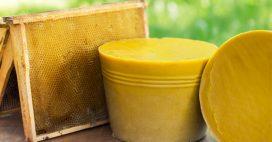 La cire d'abeille, sans traitement chimique SVP!