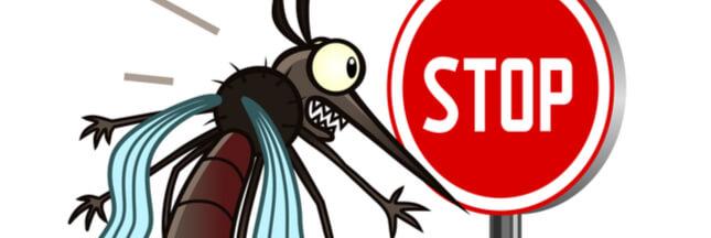 Des astuces naturelles contre les moustiques