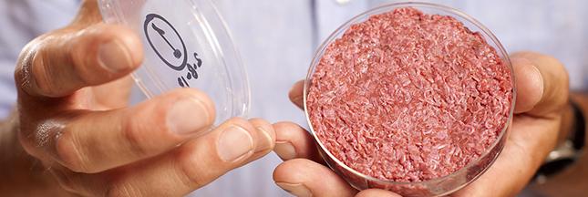 De la viande in-vitro pour l'environnement?