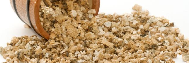 Vermiculite: Usages, dangers, comment s'en protéger