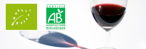 Vin bio, vin traditionnel: quelles différences?