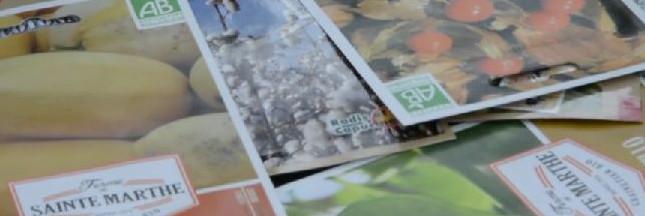 Une grainothèque pour troquer des semences (reportage vidéo)