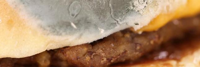 Vidéo: un burger moisit-il en 30 jours?