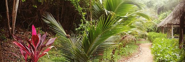 Belize, un paradis vert