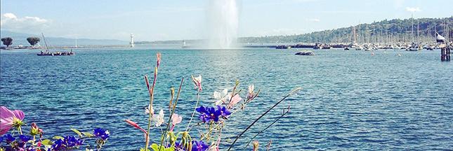 [1er avril] Le lac Léman menacé par une nouvelle espèce invasive!
