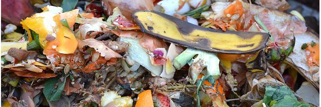 A Lille, des solutions pour lutter contre le gaspillage alimentaire
