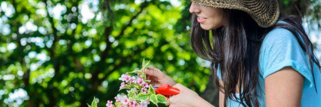 soins naturels fleur jardin