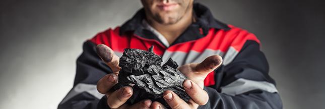 Le charbon de bois: de la déforestation à la régénération des sols