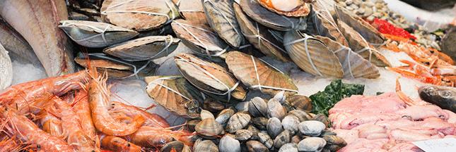 Manger du poisson en été: 10 espèces qui ne sont pas menacées