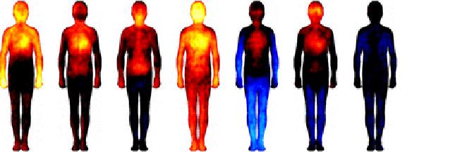 La carte corporelle de vos émotions révélée