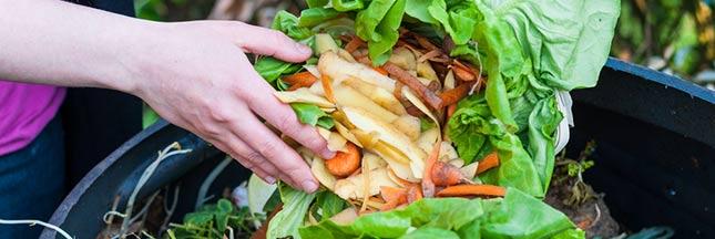 Arrangez les épluchures pour faire revivre les déchets alimentaires