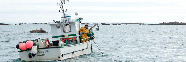 'On peut manger du poisson durable sans nuire aux stocks'