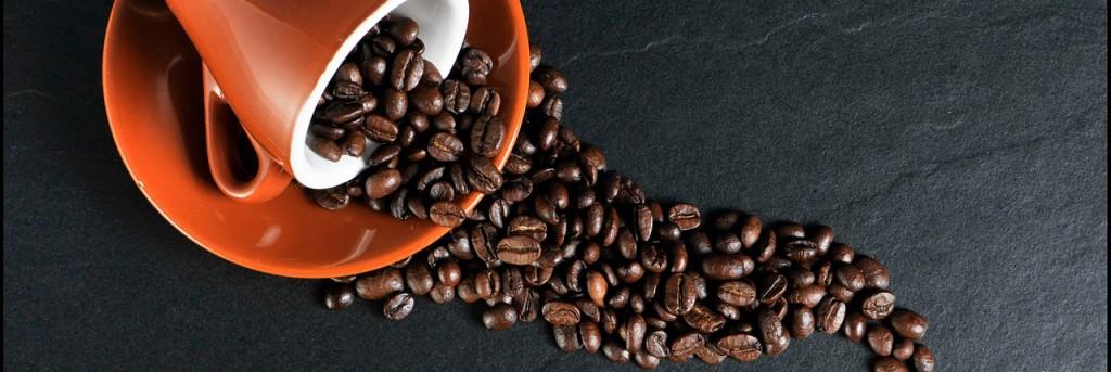 Marc de café: 11 astuces économiques et écologiques pour la maison