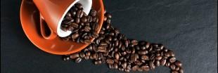 Marc de café : 11 astuces économiques et écologiques pour la maison
