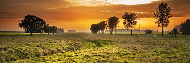 Écologie:  le supplément d'âme de Bercy