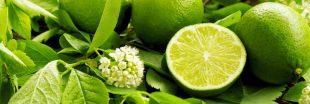 Réduire l'anxiété avec l'huile essentielle de citron vert