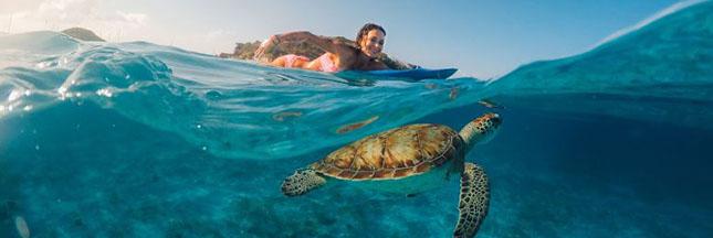 10 photos d'expériences naturelles incroyables qui risquent de ne plus être possibles