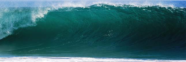 Les océans envahis par des bactéries tueuses?