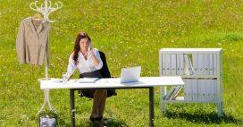 Apportez des plantes au bureau pour être heureux au travail