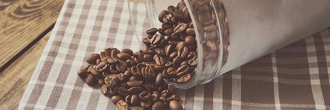 Le café risque-t-il de disparaître?