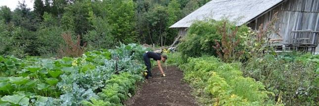 Un village de Dordogne reprend vie grâce à l'écologie