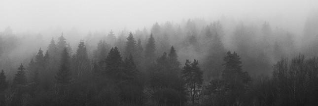 Êtes-vous touchés par la dépression saisonnière hivernale?