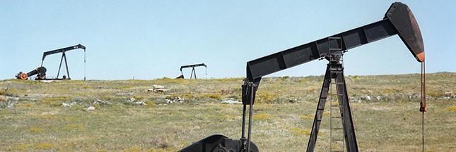 Des alternatives au pétrole explorées par les chimistes