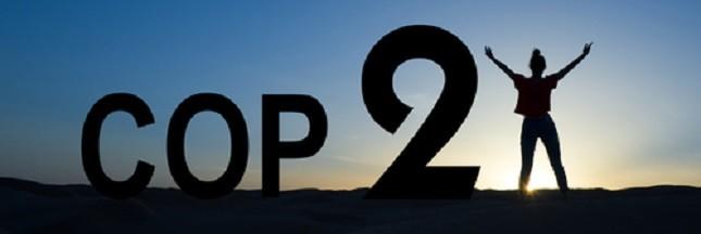 Impact de la COP21: «Il y a une véritable dynamique au niveau local»