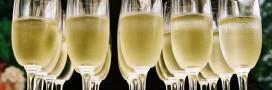 champagne bio