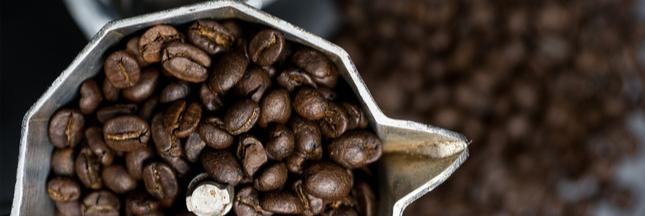 Café: les grands crus éthiopiens menacés par le réchauffement climatique