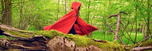 Promenons-nous dans les bois avec le FSC!