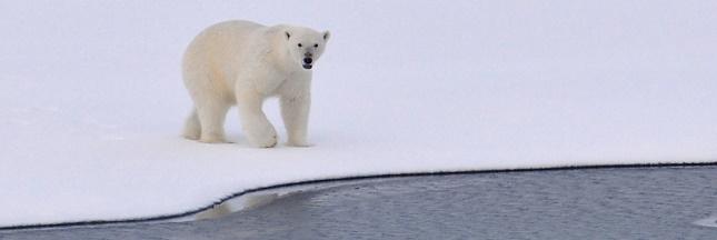Un gaz hilarant s'échappe de l'Arctique à cause de la fonte des glaces