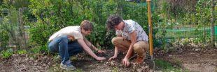 Envie d'un jardin en permaculture ? Arbraculture vous accompagne